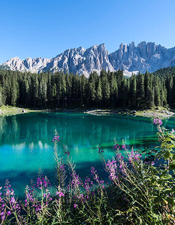 pietralba lago escursione